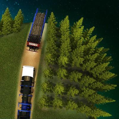 Equipamentos para o Transporte Florestal